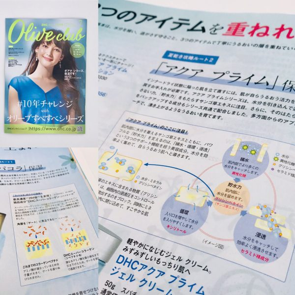 株式会社DHCの会報誌「オリーブ倶楽部」7月号、8月号イラストカット